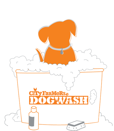 Mobile dog wash perth brisbane city farmers dog wash bannericon solutioingenieria