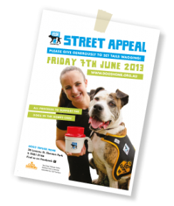Dogs' Refuge Home Street Appeal 2013