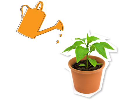 Watering Can and Pot Plant